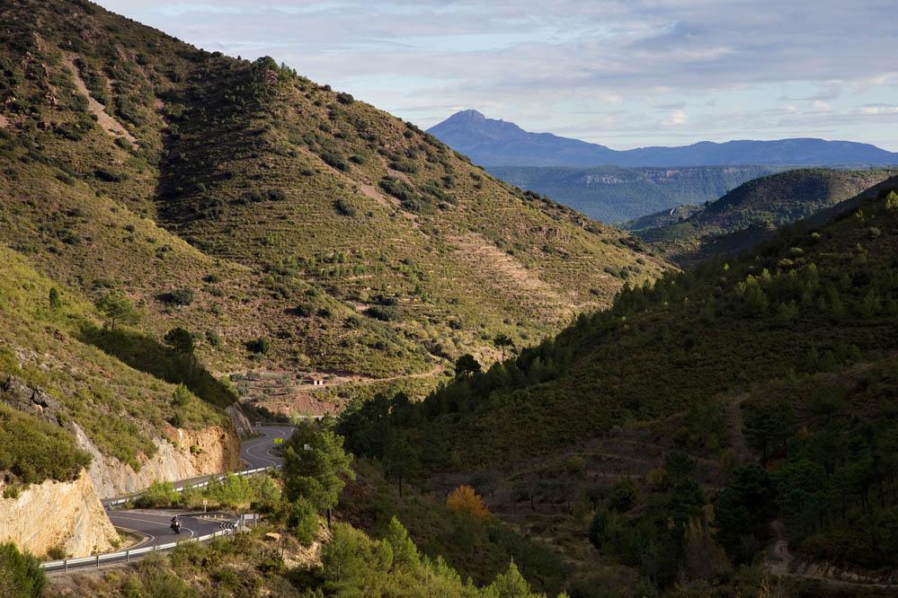 Ruta del Cid (VI)