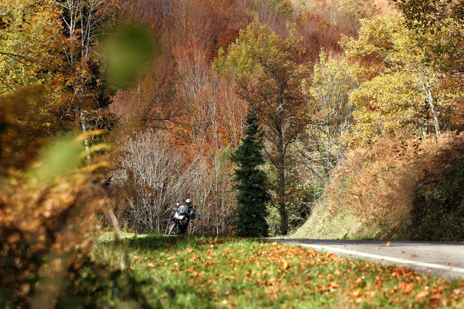 Montar en moto en otoño es idílico... casi siempre