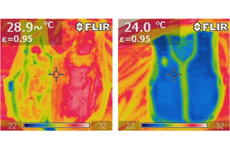 Chaleco Macna Dry Cooling