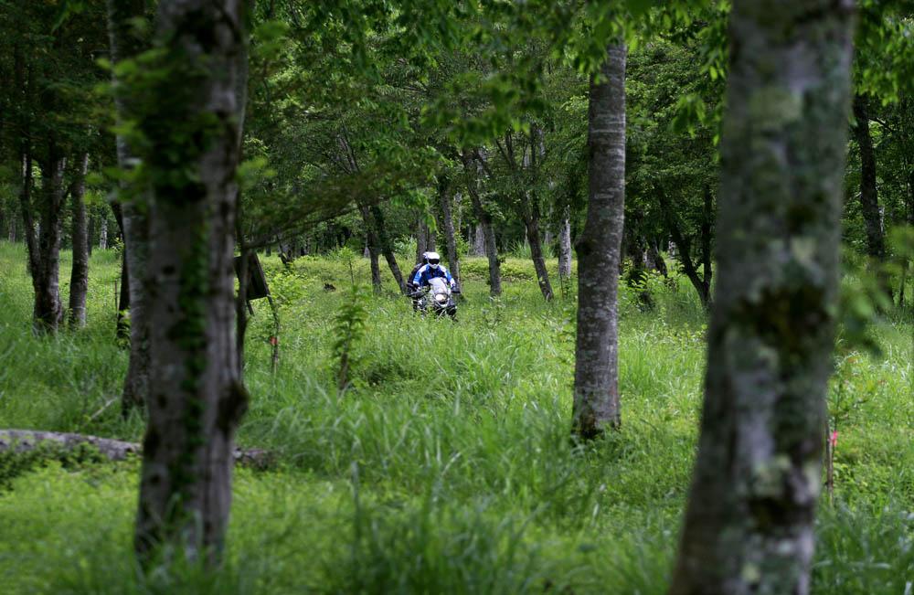Descubriendo Japón en moto. Galería de fotos