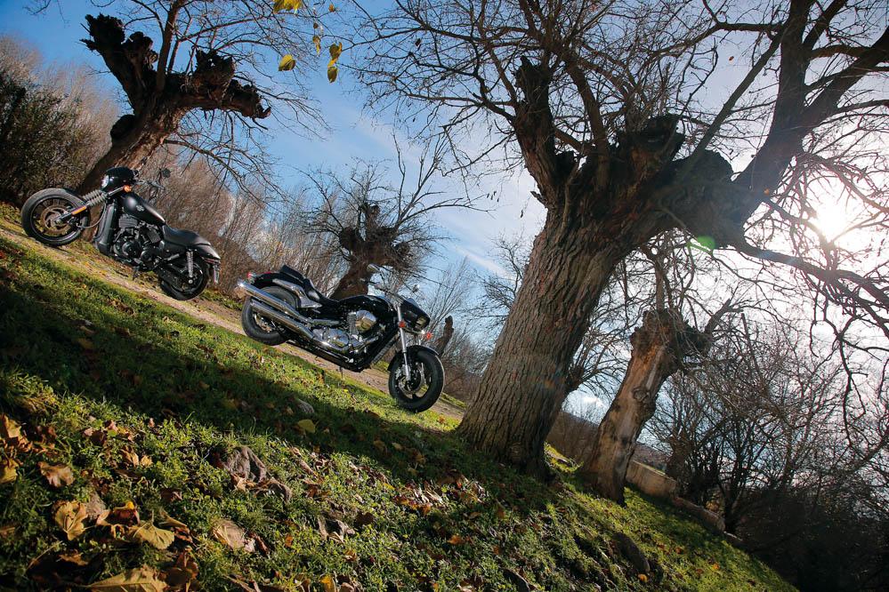 Comparativa Custom: Harley-Davidson Street 250 y Suzuki Intruder M800. Galería