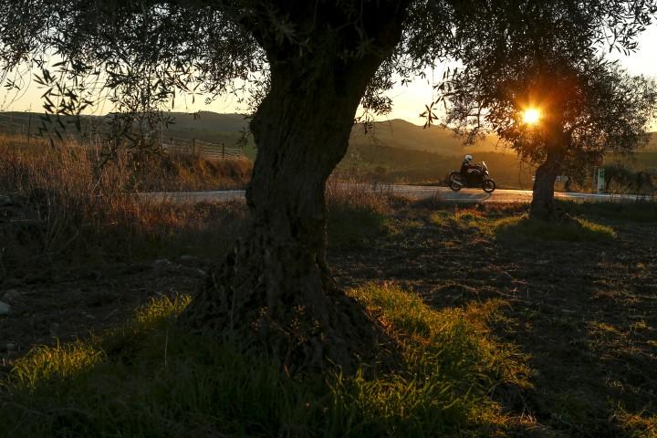 Ruta en moto por La Serena y tierras pacenses