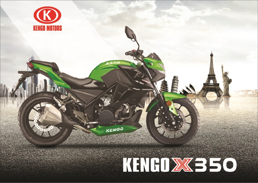 Kawasaki Z300 china