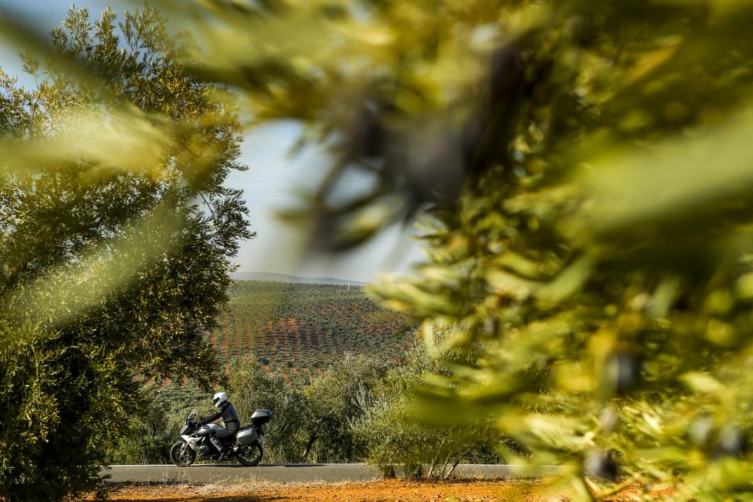 Ruta en moto por Sierra Madrona y Valle del Alcudia con Ruralka