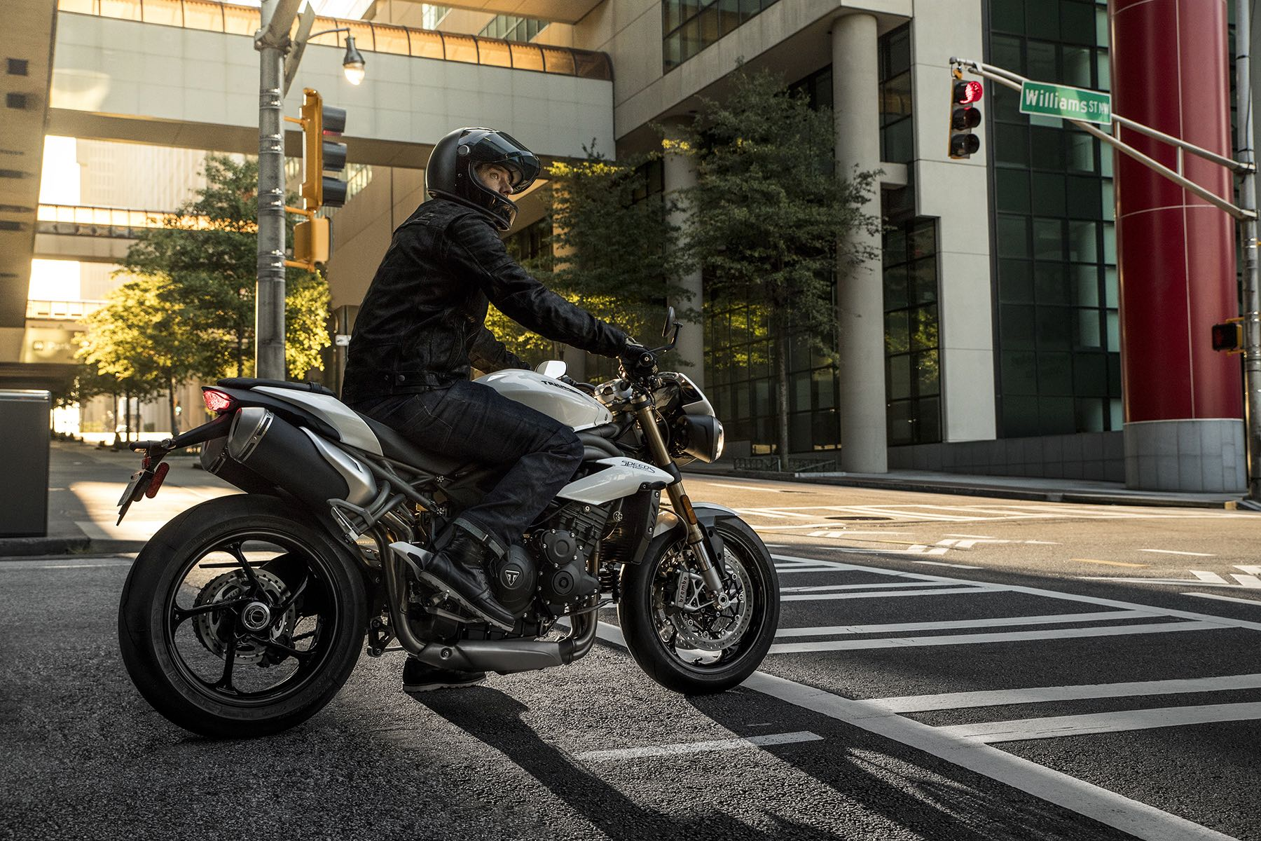 Triumph Speed Triple S / RS 2018