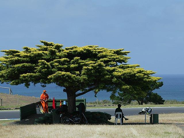 Imagen de Galeria de Tendremos Phillip Island hasta 2011